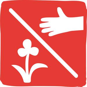 Il est interdit de cueillir ou de détruire les plantes