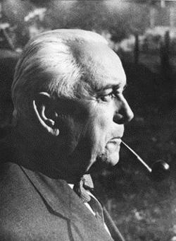 Akademik Ivo Pevalek (foto: Arhiv NPPJ)
