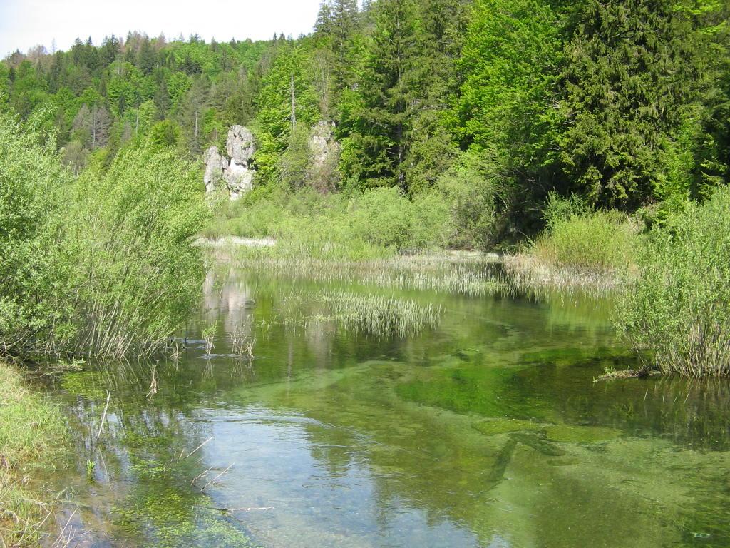 Bijela rijeka